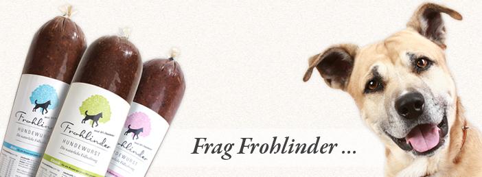 Frag Frohlinder